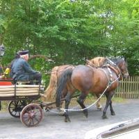 Feuerwehrfest-2007_8